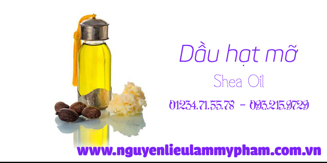 Shea-oil-dau-hat-mo