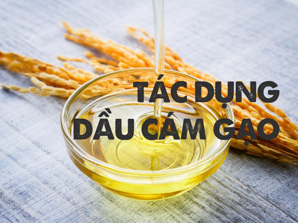 Công dụng dầu cám gạo